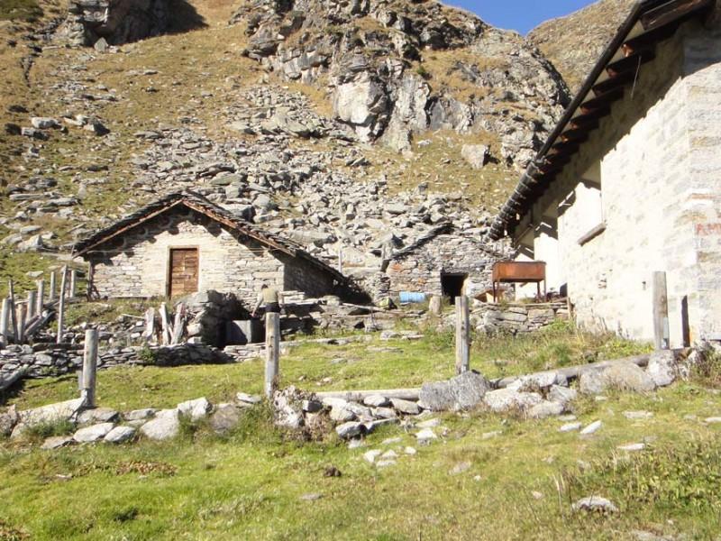 Alpe Val Calanca